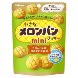 Mini Biscoitos Melonpan