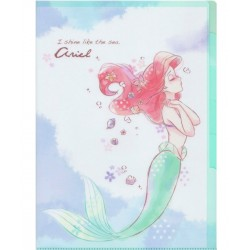 Ariel Index File Folder