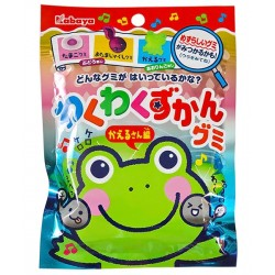 Waku Zukan Frogs Gummies