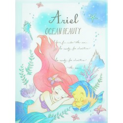 Ariel Ocean Beauty File Folder