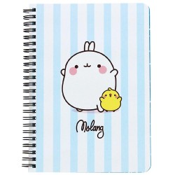 Molang & Piu Piu A5 Notebook