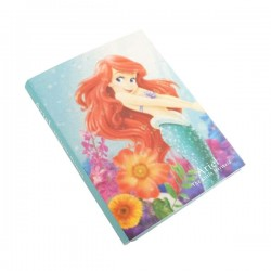 Ariel Sticky Notes Book