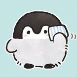 Koupen Chan Penguin