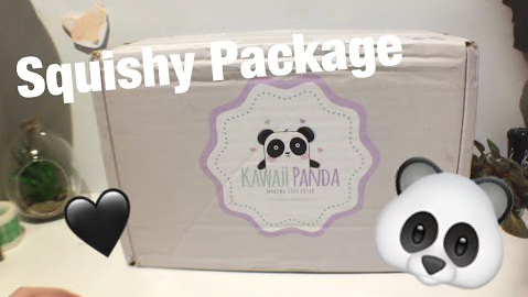Kawaii Panda squishy package!